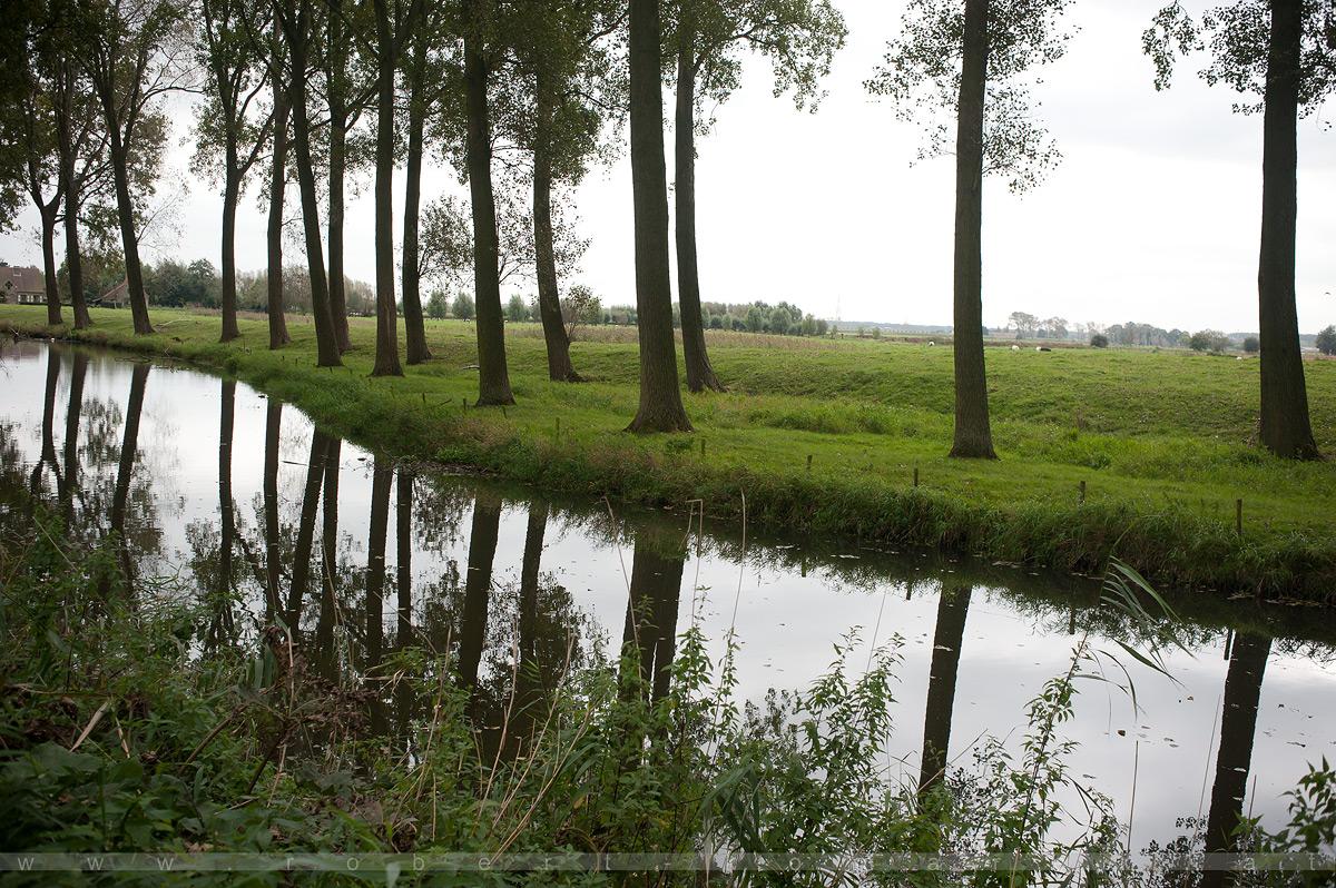 To Be Belgian - Damme / Belgium 2014