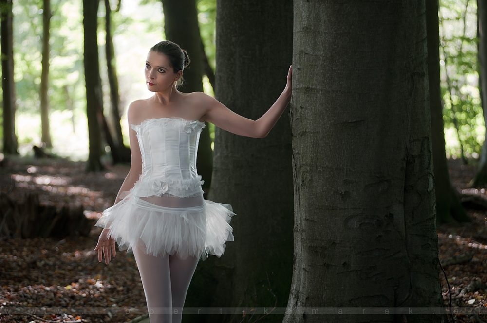 Fairy Tale 19
