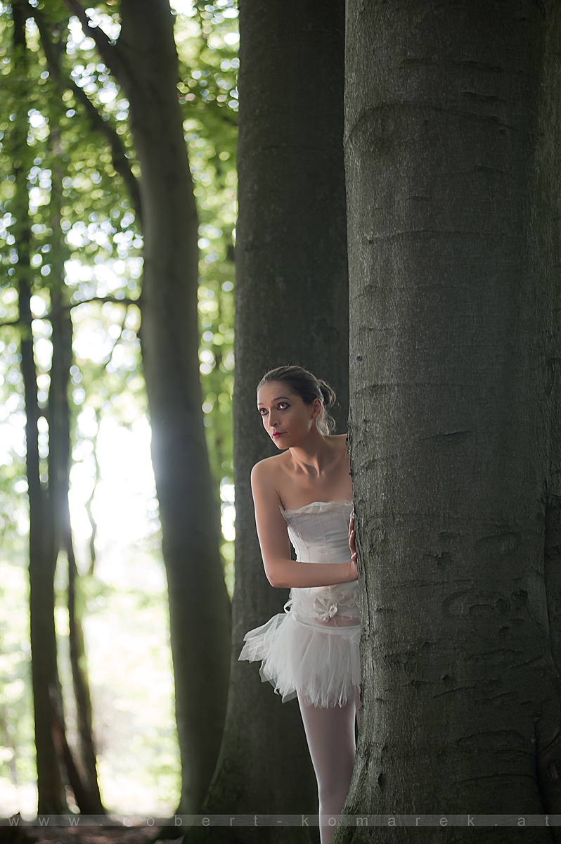 Fairy Tale 20