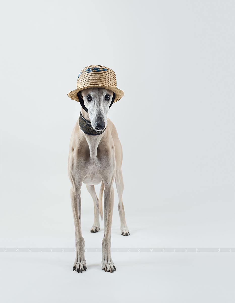 Top Hat 3 01
