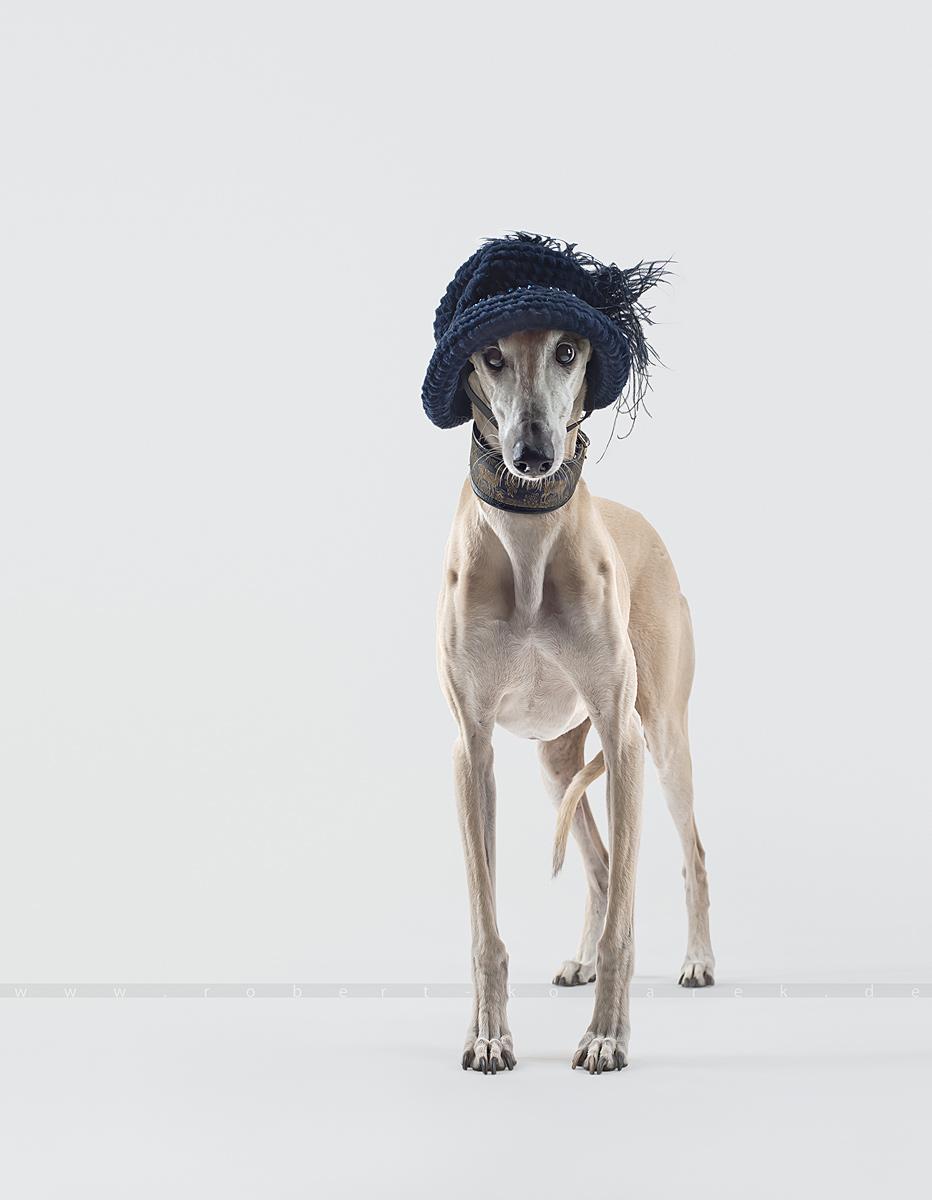 Top Hat 3 03