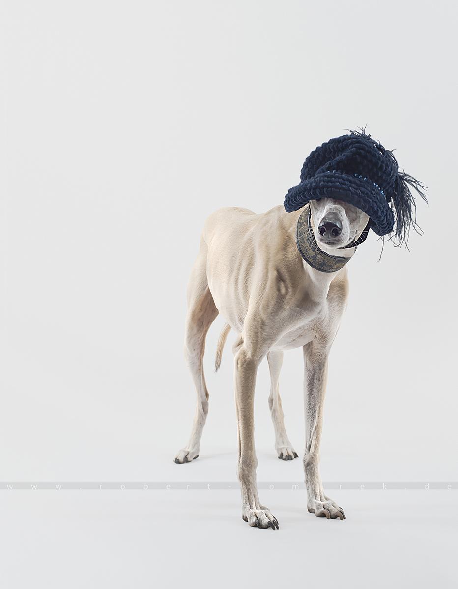 Top Hat 03 04
