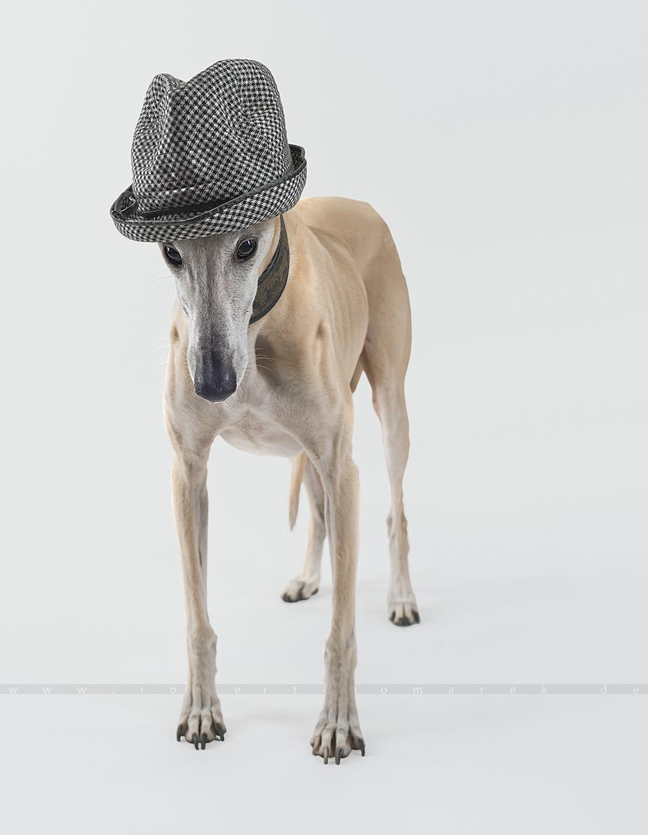 Top Hat 3 05