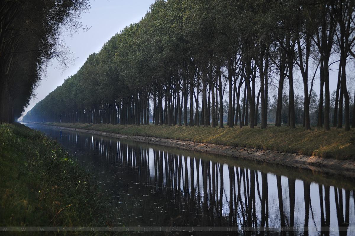 To The Left - Damme / Belgium 2014