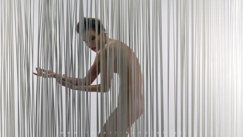 Bamboo07